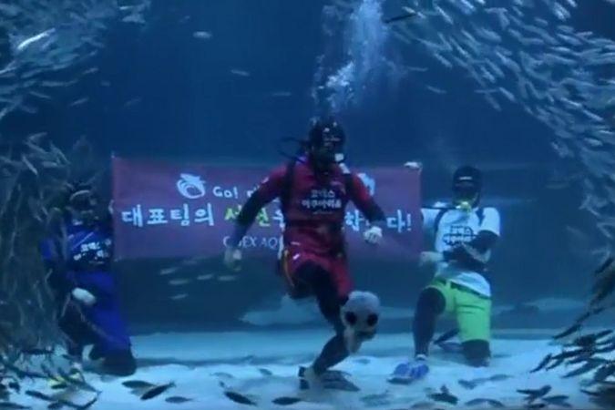В аквариуме Сеула посетителям показали футбол под водой