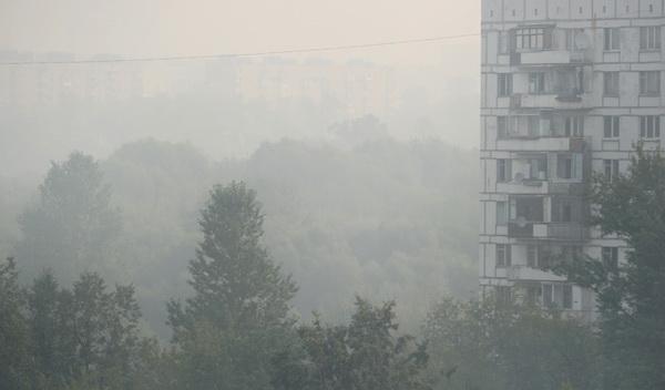 Москва, смог, торфяники, задымление