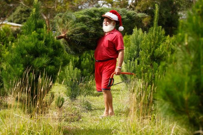 Санта-Клаус, Сидней, Австралия, фото дня, фото