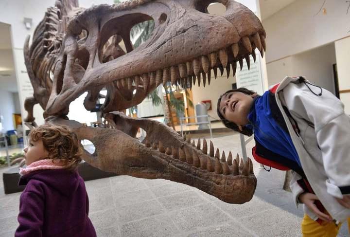 Аргентина, выставка, кости динозавра, Патагония