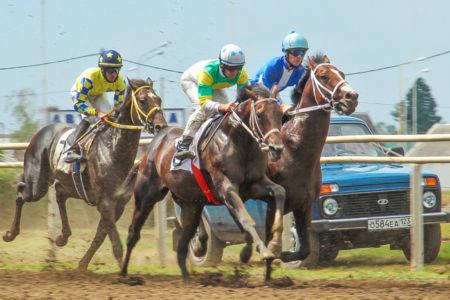 конные состязания