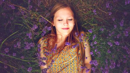 лаванда, травы, спокойствие, счатсье