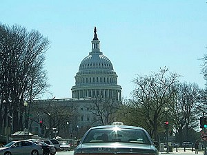 115 2008 4 17 11dome copy - Прогулка по Вашингтону