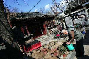 Опираясь на древние традиции Китая