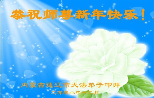 115 3112 heka27 - Фотообзор: Поздравительные новогодние открытки основателю Фалуньгун, присланные из Китая