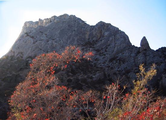 Крым. Горы. Тишина, или отпуск в ноябре