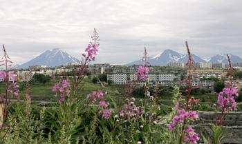 На Камчатке активизировался действующий вулкан  Шивелуч, ожидается мощное извержение