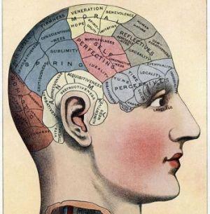 Расположена ли память за пределами мозга?