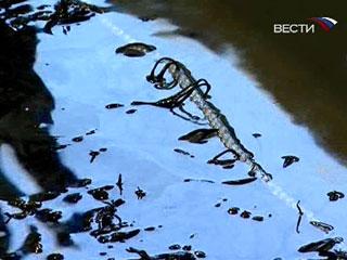 115 b 268569 - Во Франции возник острый дефицит мазута