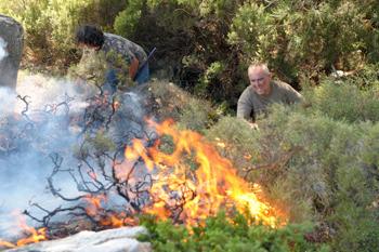 90 27 07 2009 826 - В Европе  жара и лесные пожары приняли размеры стихийного бедствия