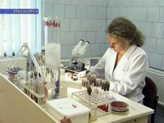 Новые случаи свиного гриппа зафиксированы на Дальнем Востоке, в Сибири и на Урале