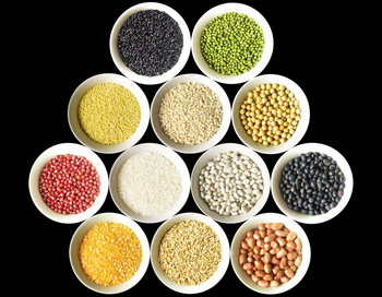 163 grains and beans 1005 - Современная цивилизация, современные люди и современные болезни: баланс пяти элементов в пище. Часть вторая