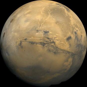 Жизнь на Марсе: на что это будет походить?