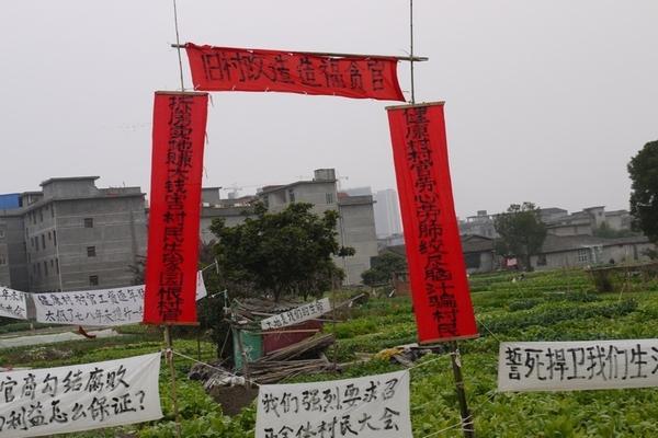 137 u131 Krestjane China 1 - Крестьяне в Китае встречают Новый год протестами