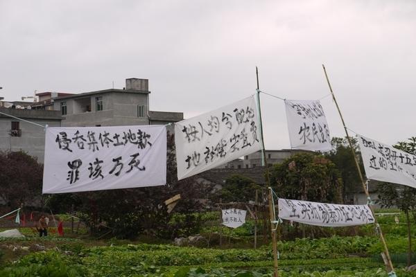 137 u131 Krestjane China 4 - Крестьяне в Китае встречают Новый год протестами