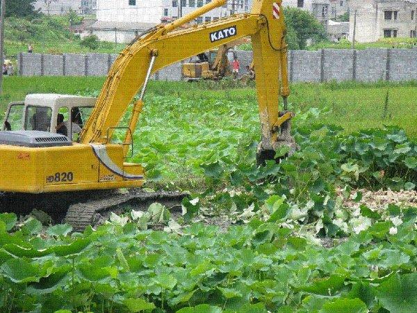 137 u91 1003 shidi2 - Десятки миллионов китайских крестьян остались без земли