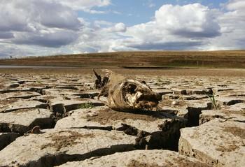 137 u91 3001 hanzai - Засуха в Китае стала самой сильной за 60 лет