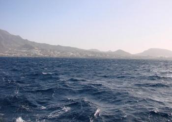 Повышение кислотности океана создаёт угрозу для морских обитателей