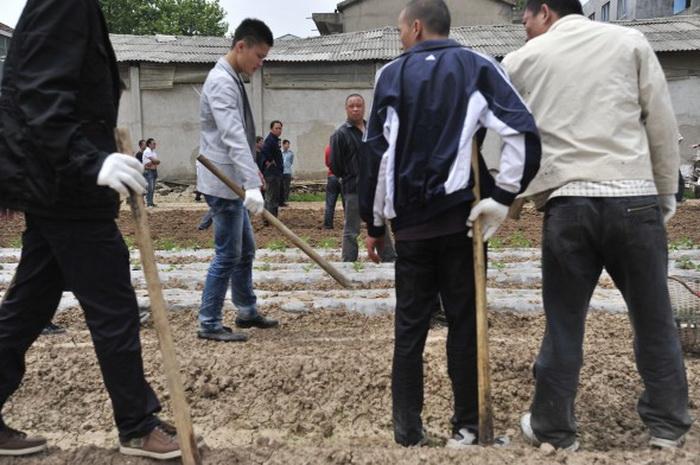 126 16 10 12 vyss - Принудительное выселение в Китае продолжается