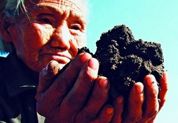 В Китае с большой скоростью уменьшается плодородие земли