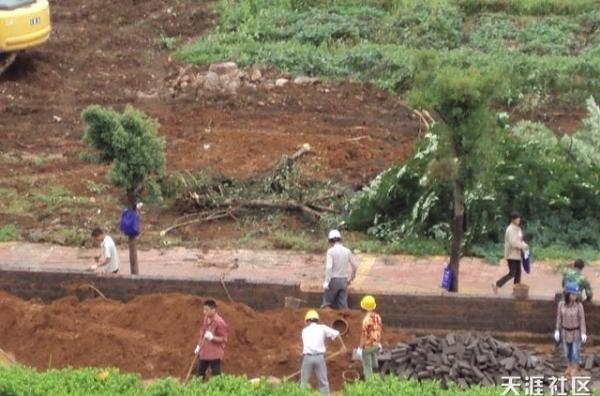 191 changlin 5 - Насильственный отъем земли в деревне Чанлинь на юго-востоке Китая