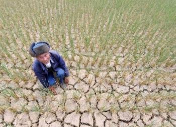 На юге Китая 3 года продолжается засуха