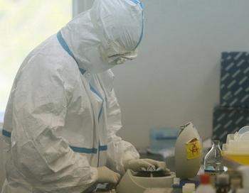 На юго-западе Китая зафиксировали вспышку птичьего гриппа