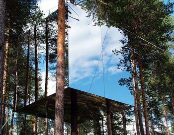 126 15 07 10 OTEL - В Швеции откроют гостиничный номер на дереве