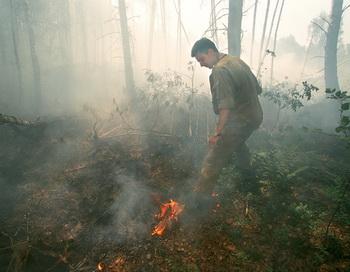 Пожары на торфяниках снизили спрос на загородное жилье
