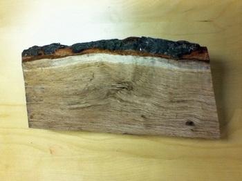 163 3001 02 wood - Анатомия дерева