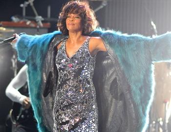Близкие Хьюстон повидались с умершей певицей в предпоследний раз перед погребением