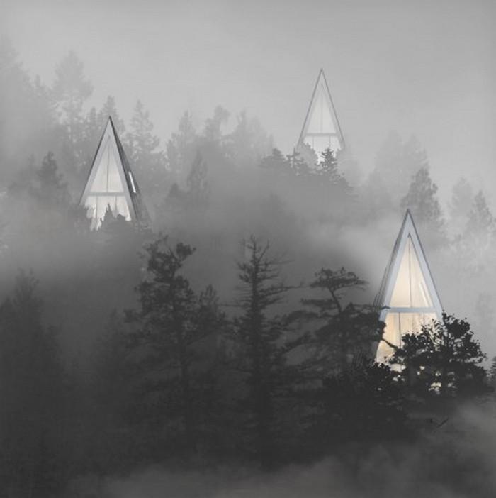 160 DerevoDom2 - Почему люди не живут на деревьях?