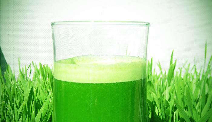 156 06 09 13 grass - Чудесное исцеление от рака с помощью ростков пшеницы
