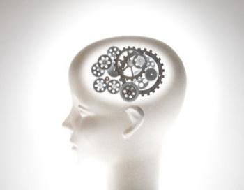 Дефицит цинка в организме сказывается на умственных процессах