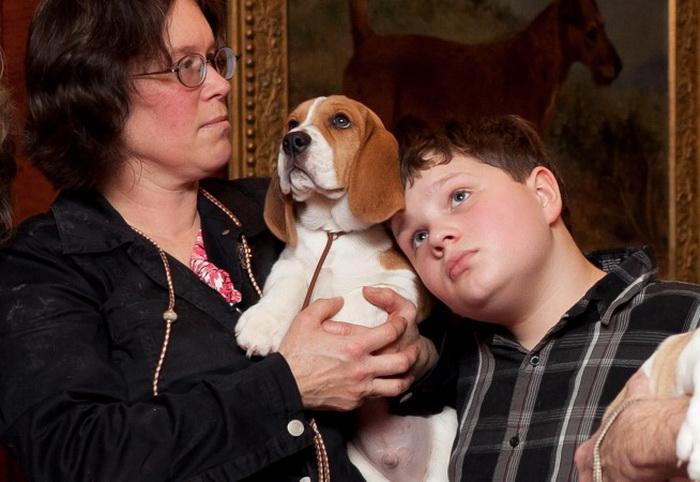 191 home 141013 2 - Собака в гармонии с окружающей средой