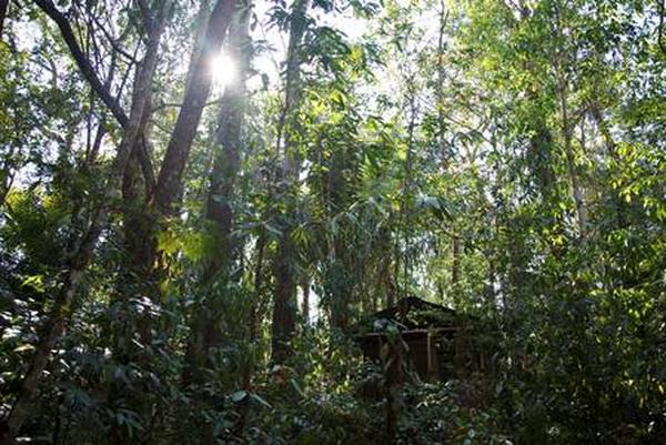 156 12 09 10 lacandon7 - Будни лакандонов в Мексике: между лесными Богами, туристами и телевизионными героями
