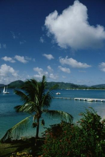 163 030410 3 volna - Мартиника - остров цветов. Часть 1