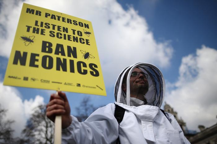 В Великобритании люди выступили против убийства пчёл пестицидами