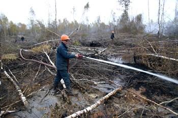 В Подмосковье загорелось более 100 торфяников
