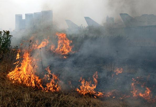 Горят торфяники, дым от торфяных пожаров затрудняет видимость на дорогах. Объявлена чрезвычайная ситуация. Фоторепортаж