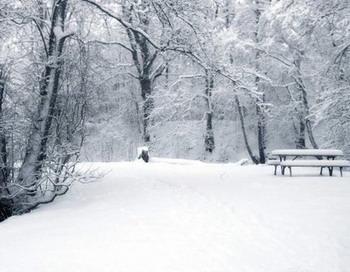 В Самаре выпал коричневый снег
