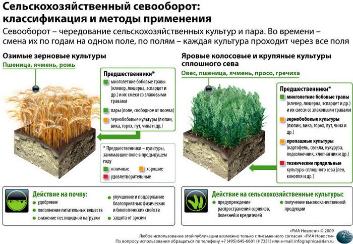 163 2809 03 index photo2 - РФ для развития сельхозэкспорта необходимо повышать качество продукции - Минсельхоз