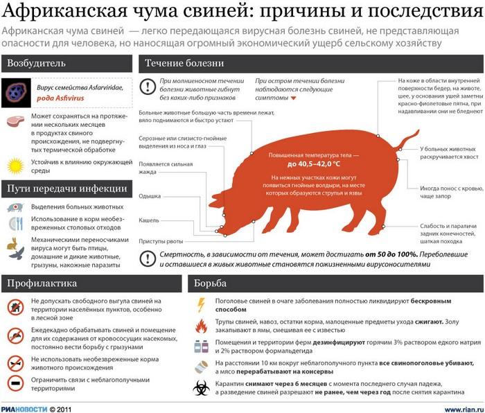 МЧС сообщает об угрозе возникновения нового очага АЧС на Кубани