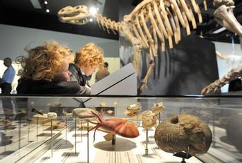 161 dinozavri - Научное открытие века. Биосфера Земли на пороге массового вымирания