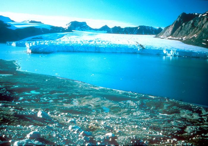 Ледовое покрытие Северного полюса сократилось до рекордного минимума