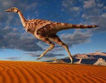 Однопальчатый динозавр обнаружен во Внутренней Монголии в Китае