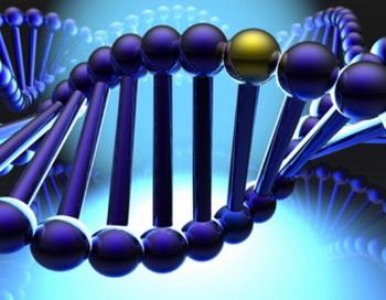 Стремление помогать людям заложено в генах
