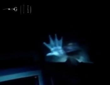 191 MermaidHand - Русалки: миф или реальность?