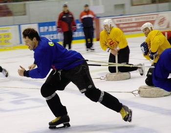 Команда омского «Авангарда» обновляется сильными хоккеистами