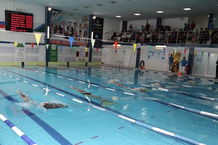 Всероссийский юношеский турнир по плаванию «Золотая ласта» прошёл в Новосибирске